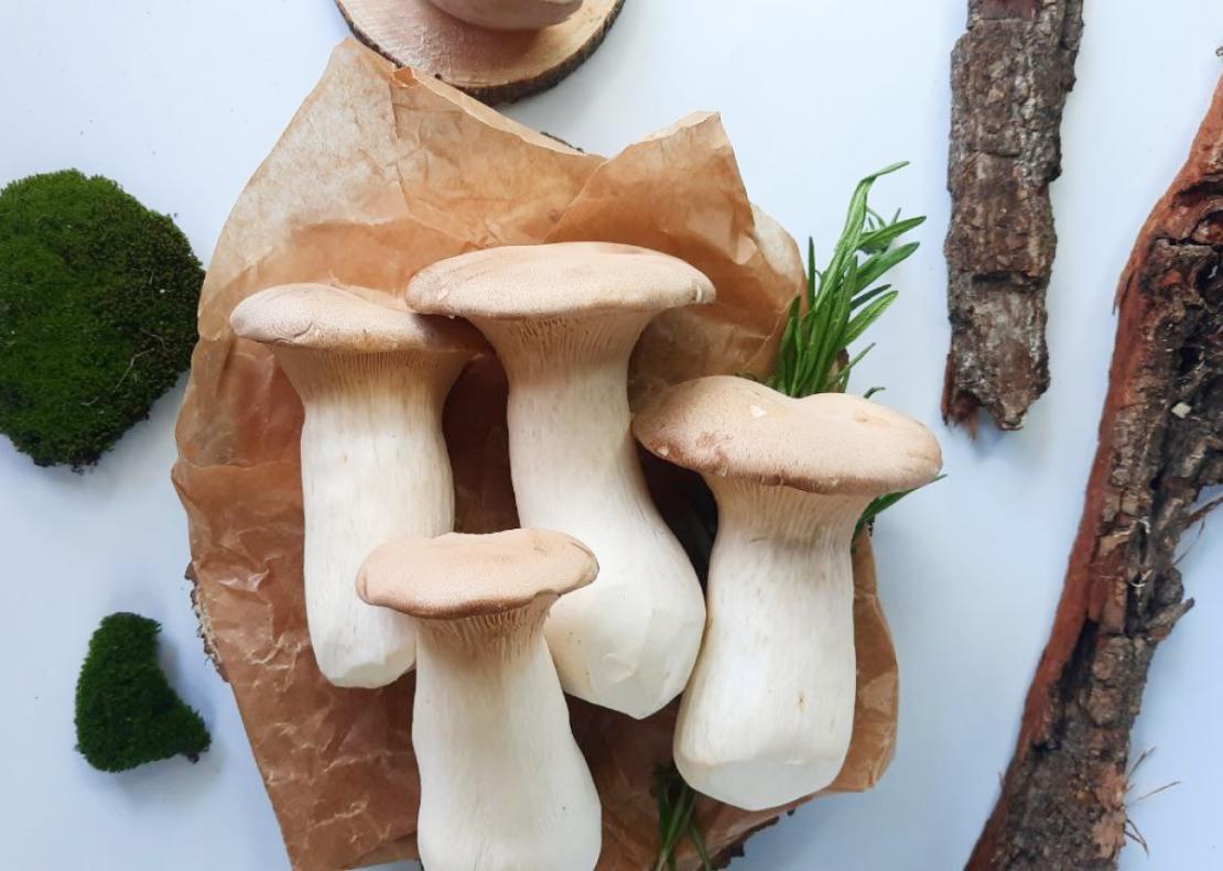 ТОП-3 вкусных грибов, о которых вы могли не знать