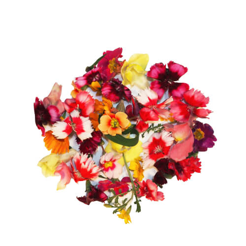 Сьедобные цветы