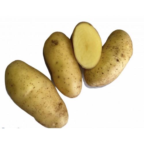 Картопля гранада