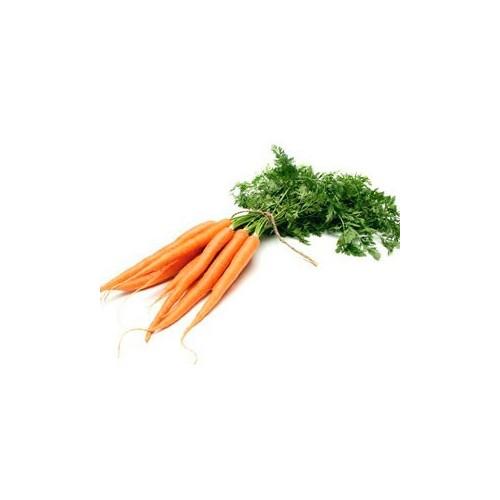Морква молода пуч.