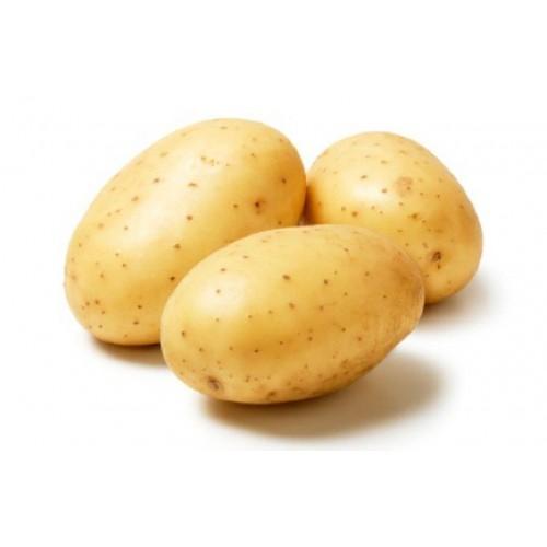 Картофель крупный белый имп.