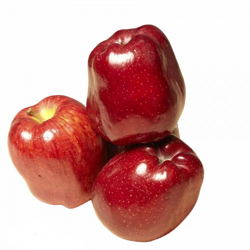 Яблоко красное Ред Чиф