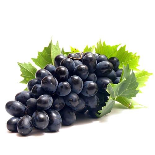 Виноград темний Молдова