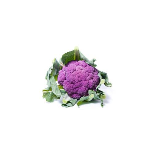Капуста цвітна фіолетова імп.