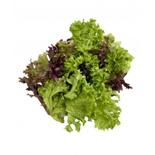 Микс салат №1(россо+бьонда+руккола+фризе) 250г