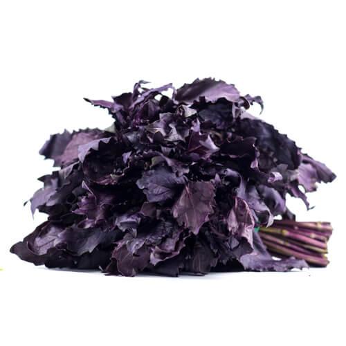Базилік фіолетовий імп.