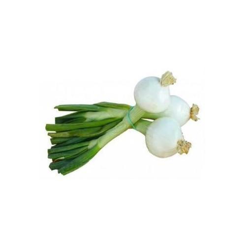 Цибуля біла молода з пером